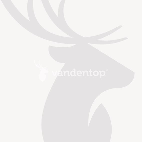 Dubbelstaafmat dubbele poort groen